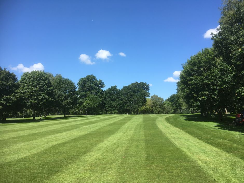 Tree-lined fairways Coventry Golf Club